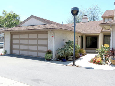 Ventura Single Family Home Active Under Contract: 226 Blackfoot Lane