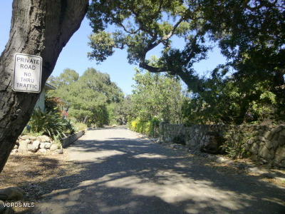 Santa Paula Single Family Home For Sale: 805 Ojai Road