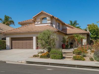 Ventura Single Family Home For Sale: 40 San Bernardino Avenue