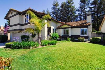 Moorpark Single Family Home For Sale: 12448 Crystal Ranch Road