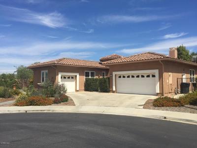 Moorpark Single Family Home For Sale: 14147 Oneida Court