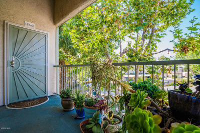 Port Hueneme Single Family Home For Sale: 866 Bluewater Way