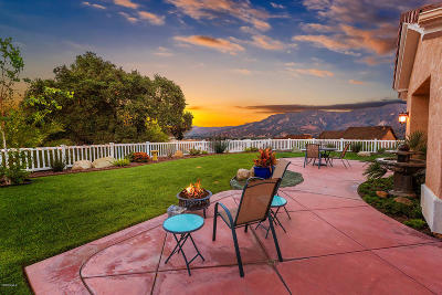Santa Paula Single Family Home For Sale: 803 Vista Grande Drive