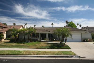 Oxnard Single Family Home For Sale: 1640 Holly Avenue