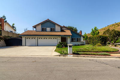 Ventura Single Family Home For Sale: 204 Channel Heights Court