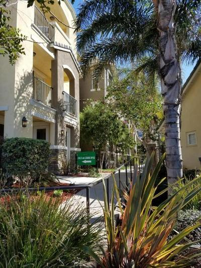 Ventura Rental For Rent: 1708 Tanager Street #201