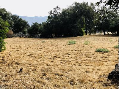 Residential Lots & Land For Sale: 1334 E Ojai Avenue