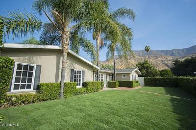 Ojai Single Family Home For Sale: 1117 Mercer Avenue