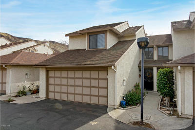 Ventura Single Family Home For Sale: 252 Ute Lane