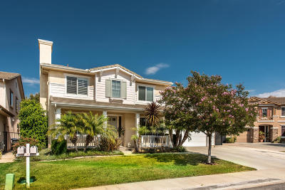 Simi Valley Single Family Home For Sale: 1016 King Palm Drive