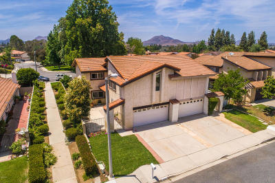 Ventura County Single Family Home For Sale: 133 Jerome Avenue