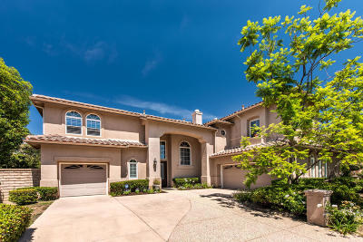Single Family Home For Sale: 5877 Evening Sky Drive