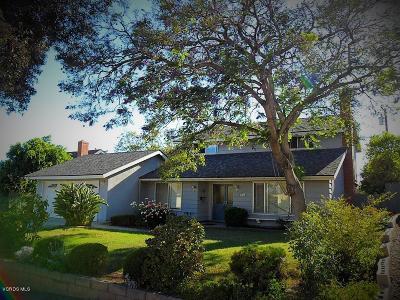 Ventura Single Family Home For Sale: 313 Regis Avenue