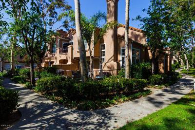 Oxnard Single Family Home Active Under Contract: 1245 Jamaica Lane