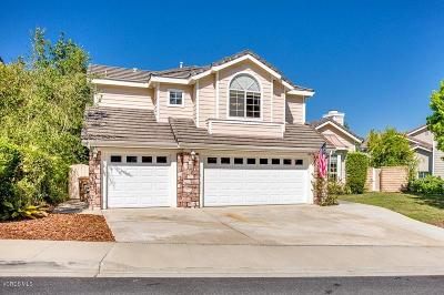 Newbury Park Single Family Home For Sale: 3176 Holloway Court