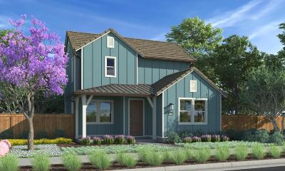 Ventura Single Family Home For Sale: 10516 Santa Monica Street
