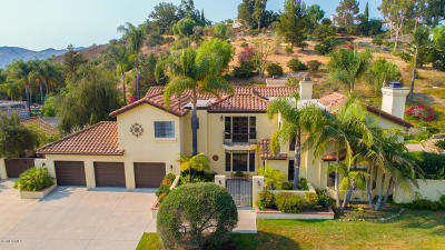 Camarillo Single Family Home For Sale: 6118 Armitos Drive