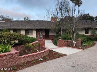 Camarillo Single Family Home For Sale: 420 Valley Vista Drive