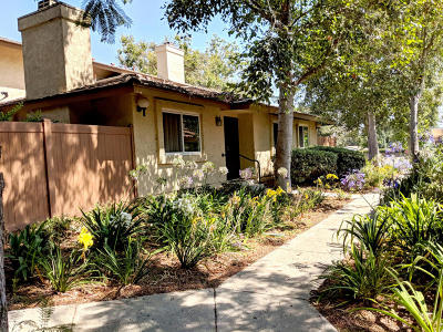Ventura Single Family Home For Sale: 587 Moses Lane