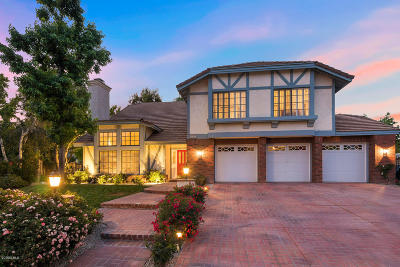 Agoura Hills Single Family Home For Sale: 5605 Middle Crest Drive