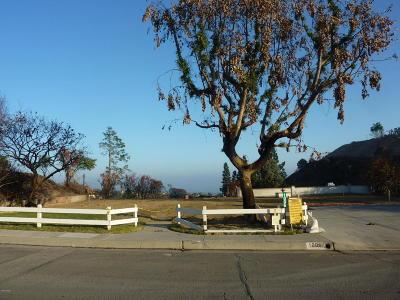 Ventura Residential Lots & Land For Sale: 1006 Via Cielito