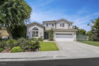 Simi Valley Single Family Home For Sale: 3365 Pine View Drive