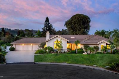 Camarillo Single Family Home For Sale: 6452 La Senda Court