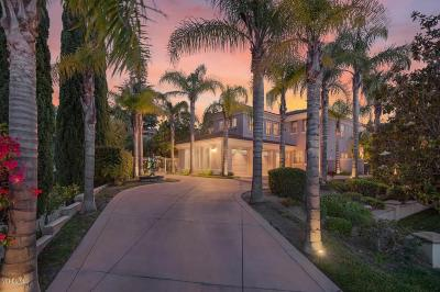 Westlake Village Single Family Home For Sale: 2027 Waterside Circle