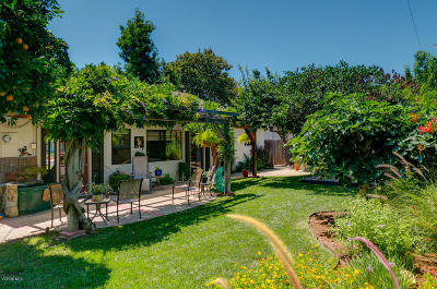 Ojai Single Family Home For Sale: 83 Crown Street