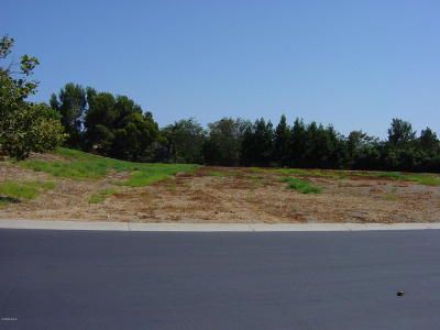 Camarillo Residential Lots & Land For Sale: 3196 Calle De Debesa