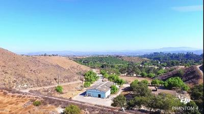 Moorpark Single Family Home For Sale: 8765 Waters Road