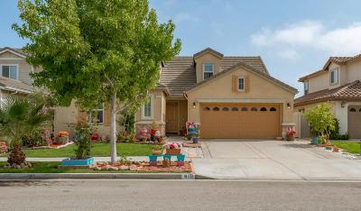 Oxnard Single Family Home For Sale: 810 Piedra Way
