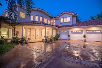 Rental For Rent: 24935 Bella Vista Drive