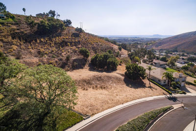 Ventura County Residential Lots & Land For Sale: Bridgeview Road