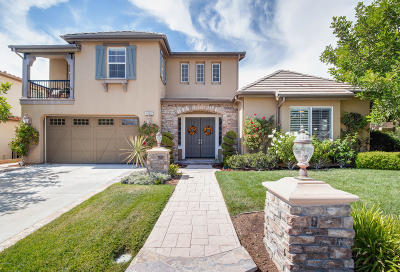 Simi Valley Single Family Home For Sale: 4095 Eagle Flight Drive