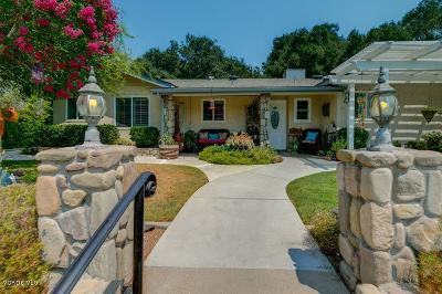 Ojai Single Family Home For Sale: 1400 Loma Drive