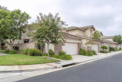Camarillo Single Family Home For Sale: 4582 Via Aciando