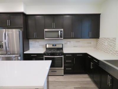 Camarillo Rental For Rent: 358 Serra Street