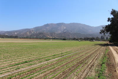 Ventura County Residential Lots & Land Active Under Contract: 18540 E Telegraph Road