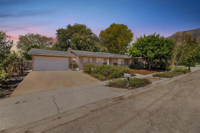 Ojai Single Family Home For Sale: 1017 Ayers Avenue