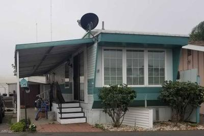 Ventura Mobile Home For Sale: 3900 East Main #14