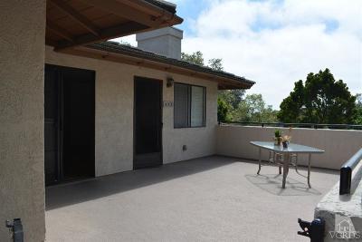 Ventura Rental For Rent: 645 Doyle Lane
