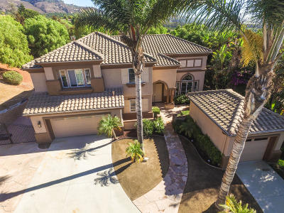 Camarillo Single Family Home For Sale: 7244 Camino Las Ramblas