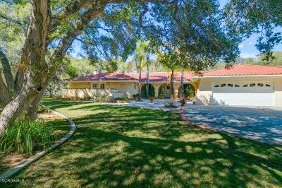 Ojai Single Family Home For Sale: 1175 Camille Drive