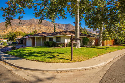 Ojai Single Family Home For Sale: 902 Park Road