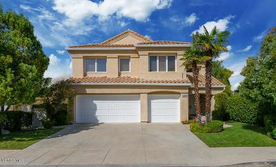 Calabasas Single Family Home For Sale: 23123 Park Terra