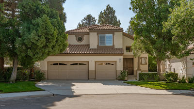 Moorpark Single Family Home For Sale: 11690 Northdale Drive