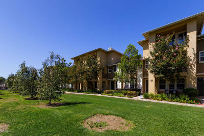 Oxnard Condo/Townhouse Active Under Contract: 403 Forest Park Boulevard