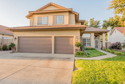 Simi Valley Single Family Home For Sale: 3831 Santa Lucia Street
