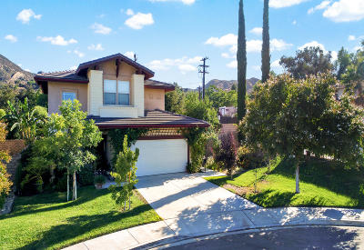 Simi Valley Single Family Home For Sale: 6202 Tangelo Place